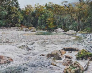 Spey River – Fiordland National Park